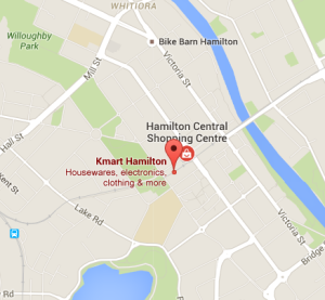 Hamilton Map Website
